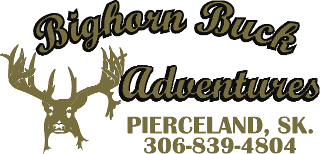 Big Horn Buck Adventures - Whitetail hunts, whitetail deer, elk hunts, sask whitetail hunts, trophy elk hunts, saskatchewan hunting